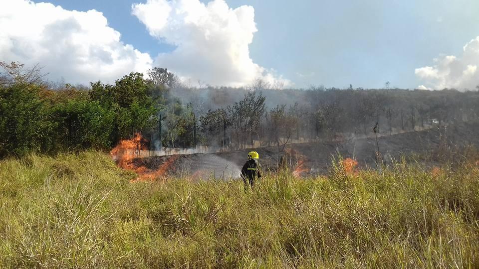 Incêndios na Serra de São José: uma história que se repete
