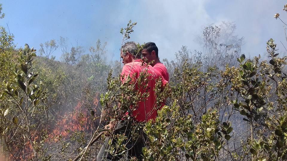 Desejo de manter a preservação do meio ambiente local mantém o Corpo de Bombeiros Voluntários (Foto: Facebook BV)