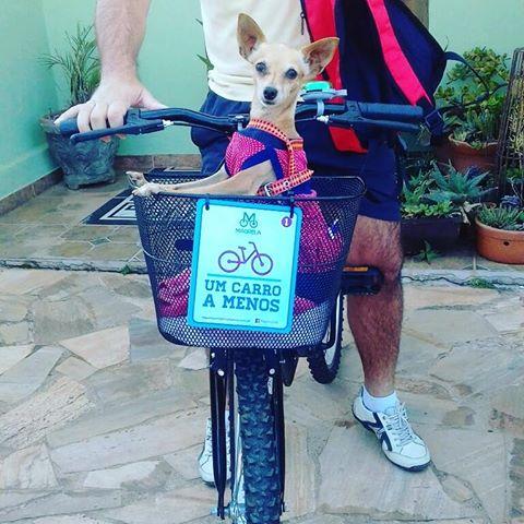 Arquivo Pessoal: turistas com a bicicleta nas pousadas